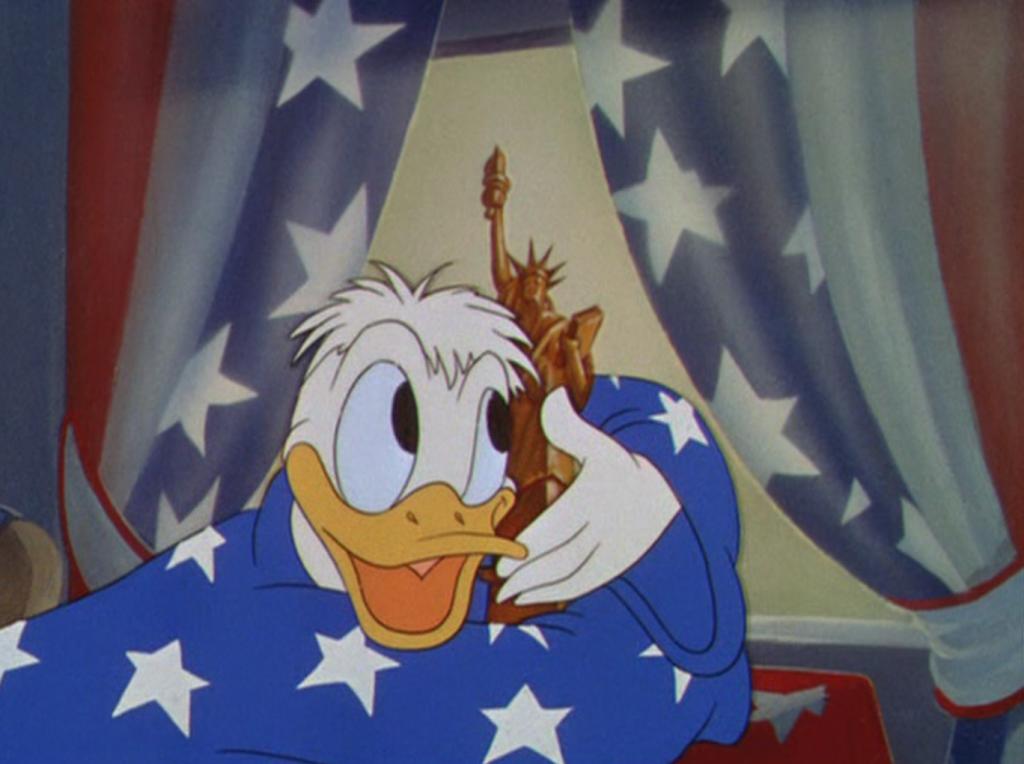 american flag donald