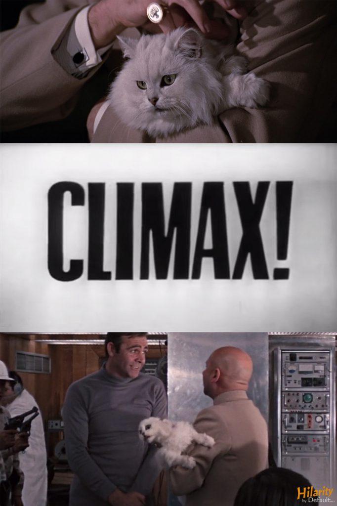 cat climax YOLT